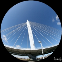 Fisheye Papendorp